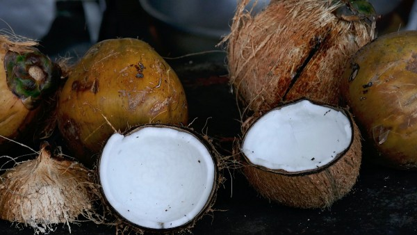 coconut oil uses, toxic household product replacement