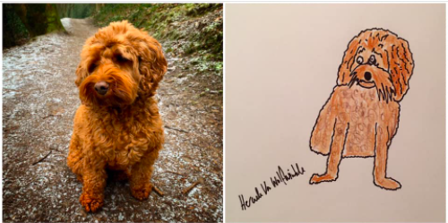 Dad Drew 'Crap' Pet Portraits, and Surprisingly Raised Money for Charity
