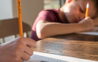 High Achievement Culture in School Can Cause Youths to Lose Interest in Maths