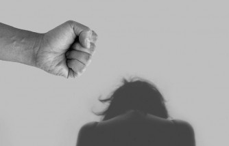 What are the types of domestic violence?