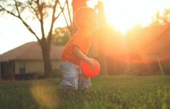 Creating The Perfect Family-Friendly Lawn