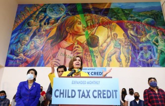 Child Tax Credit: What To Do With Delays, Missing Payments and Wrong Amount?