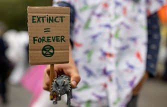 Climate Change Worries 6 in 10 Youngsters Who Say Adults Aren't Protecting Them