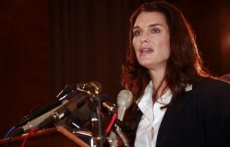 Brooke Shields Testifies At Postpartum Depression Hearing
