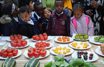 Growers And Enthusiasts Enjoy The RHS London Harvest Festival Show