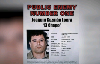 Everything You Wanted to Know About El Chapo