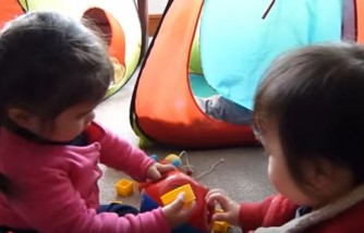 Toddlers playing with their toys.