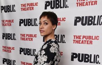 The Public Theater's Opening Night Celebration Of 'Josephine And I'