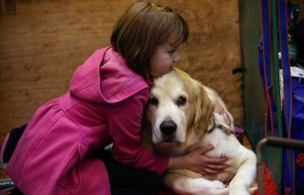 Dogs Will Outnumber Children In 10 Years
