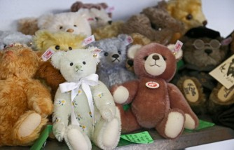 Slumber Party For Children And Stuffed Toys