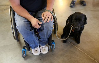 The Foundation for the Handicapped In New Jersey