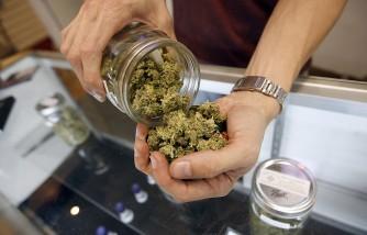 Medical Marijuana Programs In Maryland