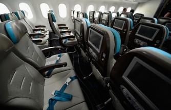 Turbulent Flight Hurts Passengers